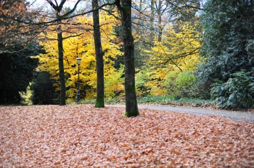 Fall in Luxembourg